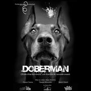 20-Doberman-lespas