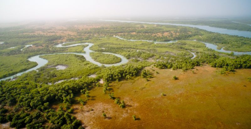 Intermèdes Nature / Papillon Belle Dame + Wetlands-2