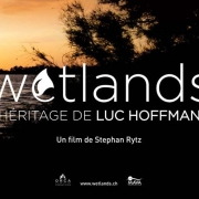 Wetlands-lespas-8