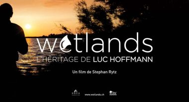 img-Intermèdes Nature / Papillon Belle Dame + Wetlands