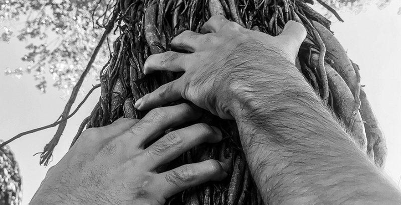Des racines et...-3