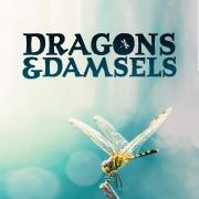 Dragons et demoiseilles-1