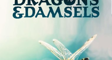 img-Intermèdes Nature - Dragons et Demoiselles