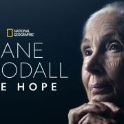 Jane Goodall-2