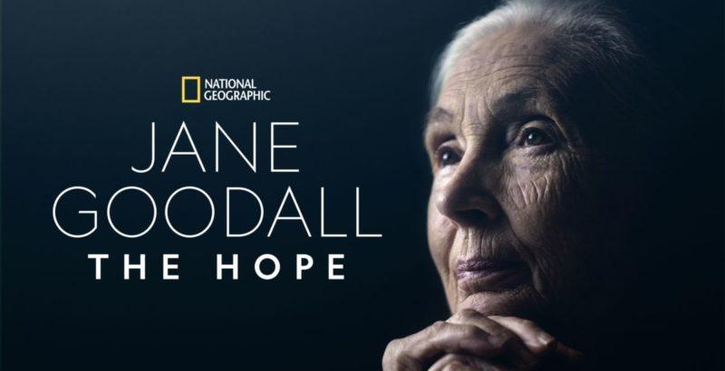 Intermèdes Nature - Jane Goodall : The Hope-1