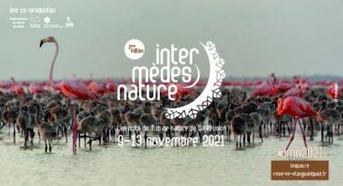 img-Intermèdes nature #3